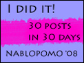 NaBloPoMo: I did it!