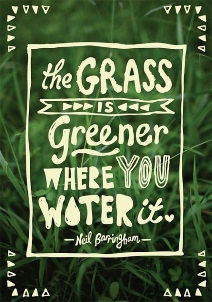 The grass is greener where you water it. -Neil Barringham